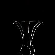 FAR Cup